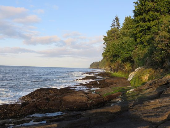 Port Angeles, WA: Short walk from out campsite