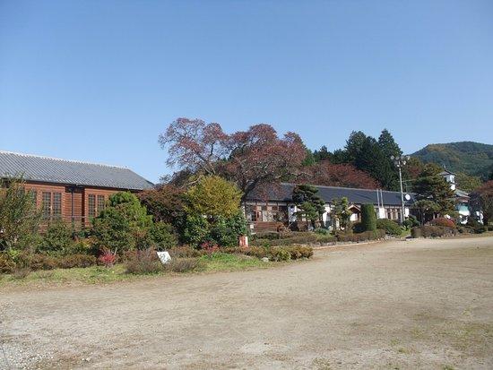 Tsugane School