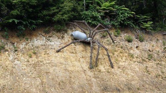 Coromandel, Selandia Baru: Big spiders