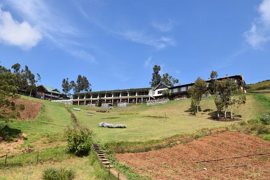 Destiny farmstay from 8 376 1 1 2 7 5 - Best hotels in ooty with swimming pool ...