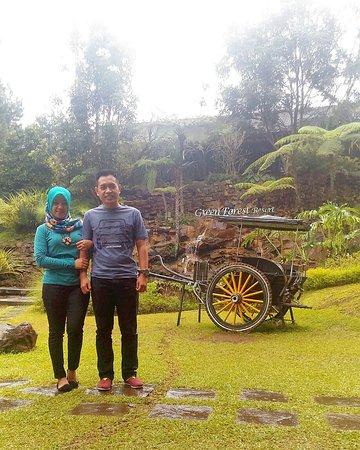 Green Forest Resort: seger kan liatnya