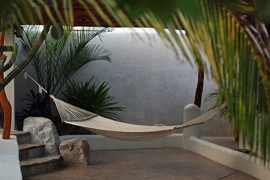 Baja California Sur, México: Relaxing hammock on the patio.