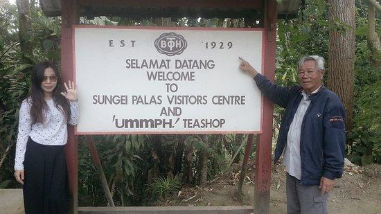 Tanah Rata, Malaysia: C360_2016-12-09-10-52-00-092_large.jpg