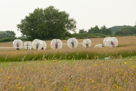 Almondsbury, UK: Hilarious zorb football at Mojo Active