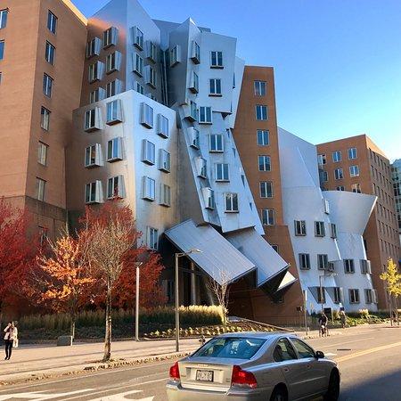 Stata Center : フランクゲーリーの建築