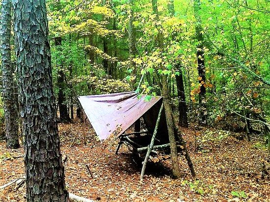Simpsonville, SC: Student Built Jungle Hooch