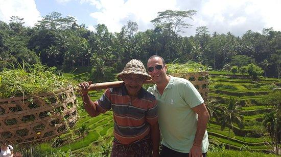 جيمباران, إندونيسيا: green green rice fields