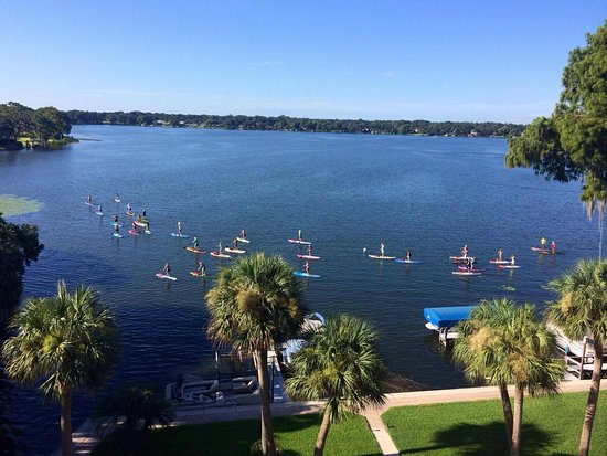 Paddleboard Orlando : Group tours on Lk Virginia , every saturday at 845 and 1045 am.