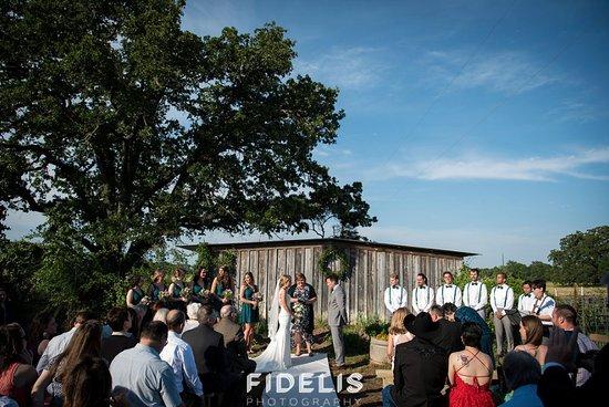 Bryan, TX: Wedding in The Garden