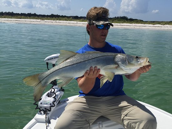 Tampa fl fishing charters all you need to know before for Fishing charters tampa