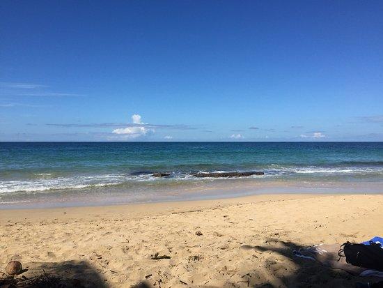 Puerto Viejo Beach: photo3.jpg