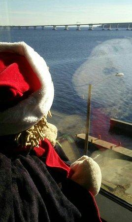 New Bern, Karolina Północna: Our mascott Herold Little Enjoying the Picturesque View