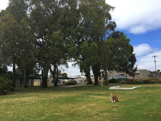 Kingscote, Austrália: parco di ingresso