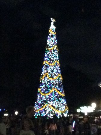 Epcot: Christmas tree was very impressive and visible from everywhere during our visit