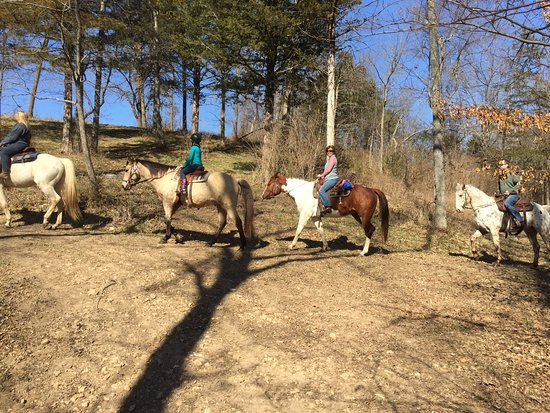 Fayetteville, AR : Small trail ride