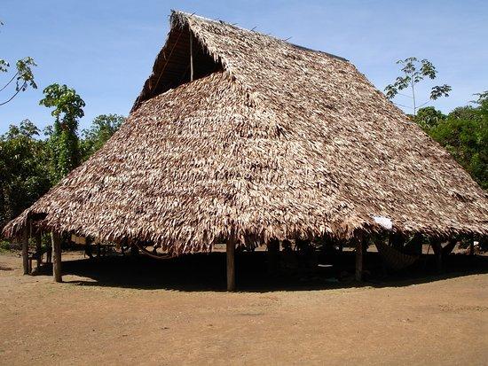 Bora Indians Boras Tribe Tent & Boras Tribe Tent - Picture of Bora Indians Iquitos - TripAdvisor