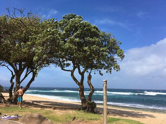 Paia, ฮาวาย: Ho'okipa Beach Park is great location to watch wind surfers.