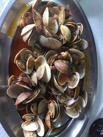 Poio, Spanyol: Impresionante la mariscada riquísima buen albariño y trato excelente,