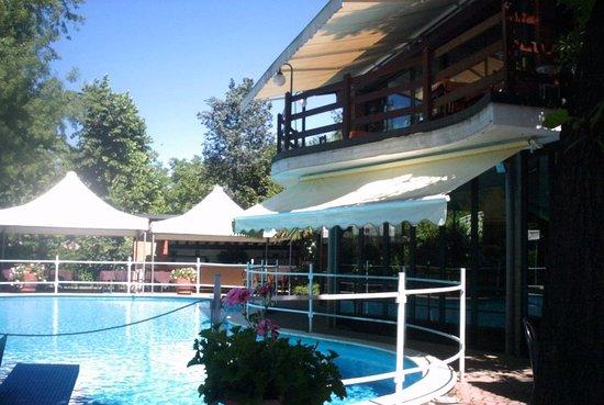 Giardino e piscina foto di ristorante villa cigno for Cigno gonfiabile per piscina