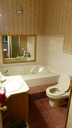 جليميل إن: Bathroom with Jacuzzi
