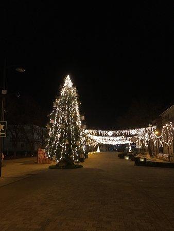 Hodmezovasarhely, Macaristan: photo0.jpg