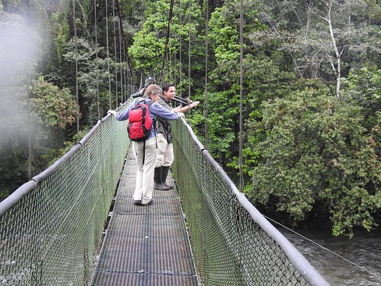 Tirimbina Biological Reserve: Bridges and well prepared trails in the reserve