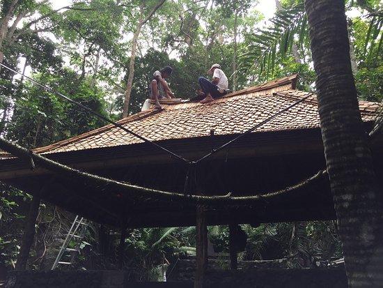 Komaneka at Monkey Forest: photo5.jpg