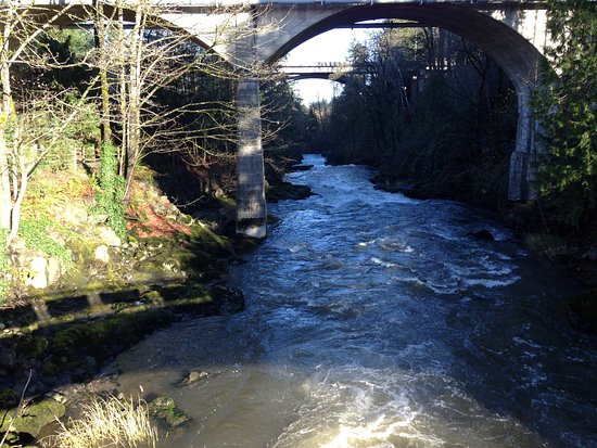 Tumwater, WA: View of lower falls (from the upper falls)