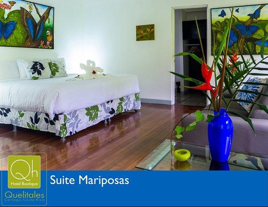 Hotel Quelitales Photo