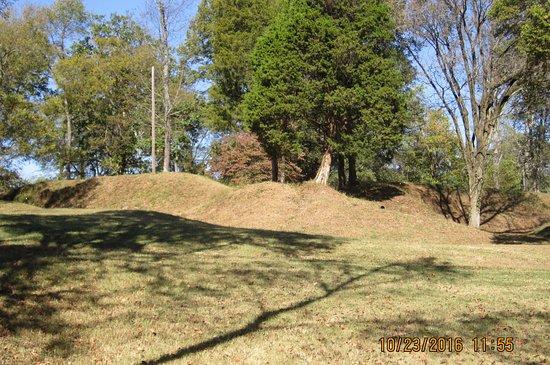 Clarksville, TN: More Fort Defiance earthworks