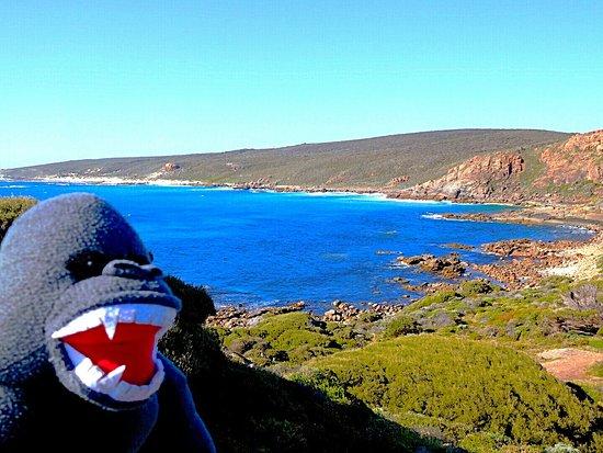 Cape Naturaliste, Australien: IMG_20161209_180008_large.jpg