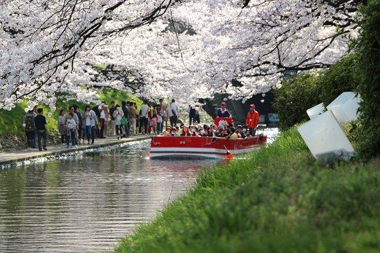 Matsukawa River Cruises