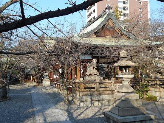 Tenson Shrine