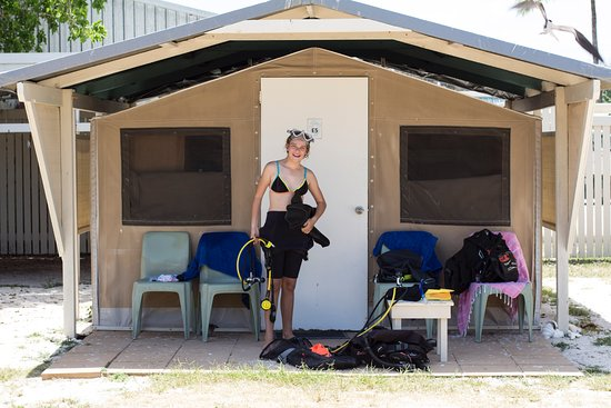 Lady Elliot Island, Australia: Eco Tent