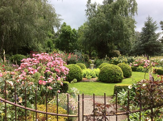 Hawarden, New Zealand: A wonderful rose garden