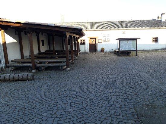 Vitek z Prcice Museum