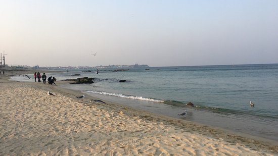 Jumunjin Beach (江陵市) - 評論 Jumunjin Beach
