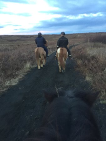 Kopavogur, Island: I cannot recommend the Gaski horse centre highly enough , thankyou Gunner for your amazing trek.