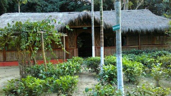 Nature Hunt Eco Camp, Kaziranga National Park: IMG_20161201_153328_large.jpg