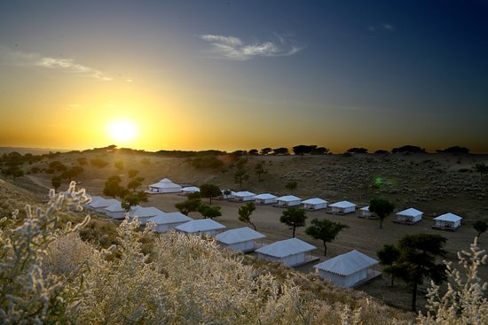 Hariyali Dhani Camps