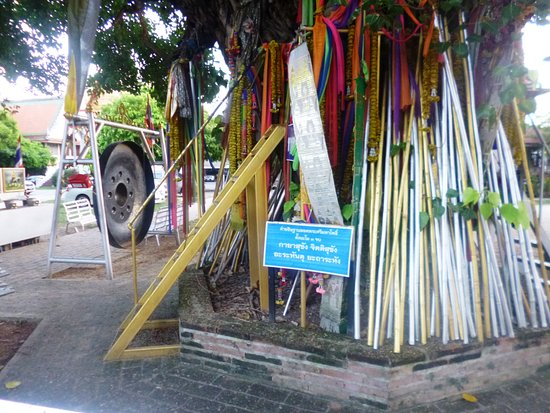Phitsanulok, Thailand: Poles against the tree