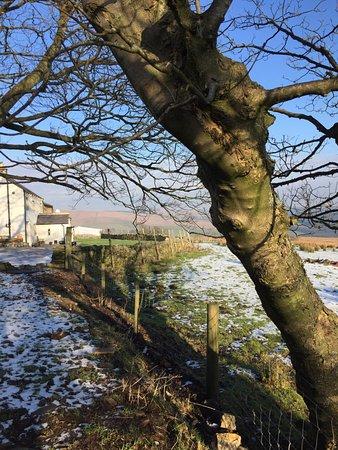Slaidburn, UK: Looking to the hose feom the garden, winter
