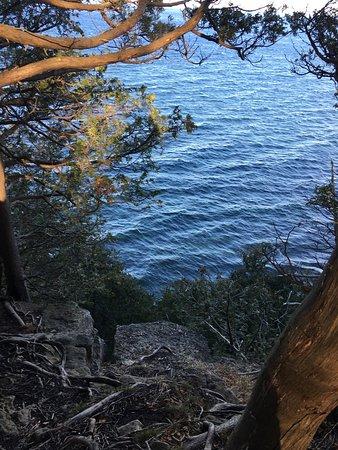 Ellison Bay, WI: Door Bluff Headland's County Park