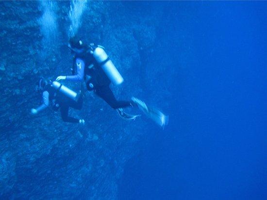 Prodiver Maui: photo9.jpg