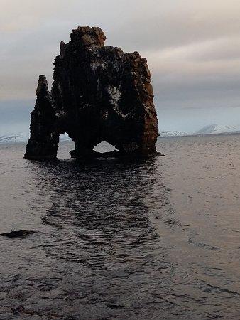 Blonduos, IJsland: Hvitserkur
