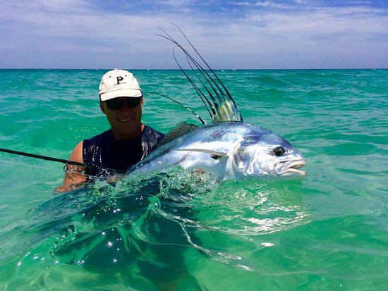 Los Barriles, Mexico: Fly caught Roosterfish with Pursuit Anglers