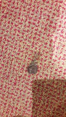 Guy's Thatched Hamlet: (2) Burns on Carpet in Exec Room 32
