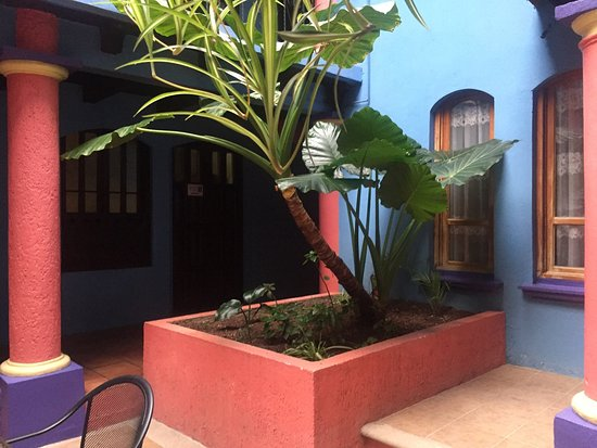 Hotel Posada Tepeyac: Muy recomendable el hotel, súper ubicado, barato y limpio...