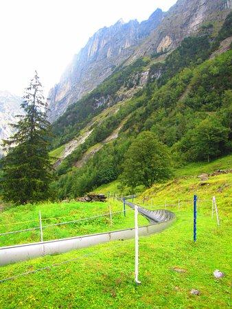 Grindelwald, Switzerland: The slide!