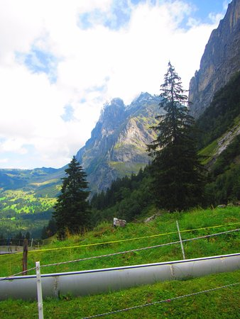 Grindelwald, Svizzera: Gorgeous views from the slide.